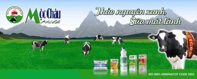 Image result for mộc châu milk